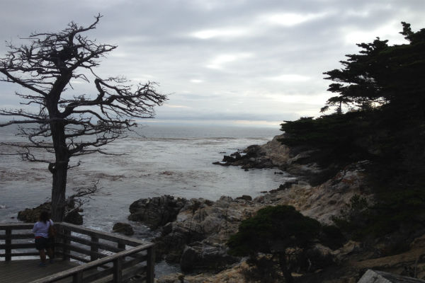 Carmel's beautiful rugged coast
