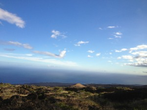 Hana Highway Maui Landscape
