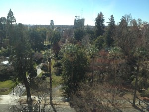 Hyatt Regency Sacramento Standard Room View